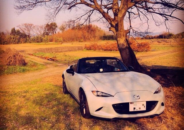 ノスタルジックな雰囲気が魅力の旧車(輸入車・国産車)